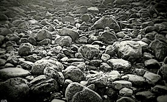 sassi sul mare - Marina di massa (795 clic)