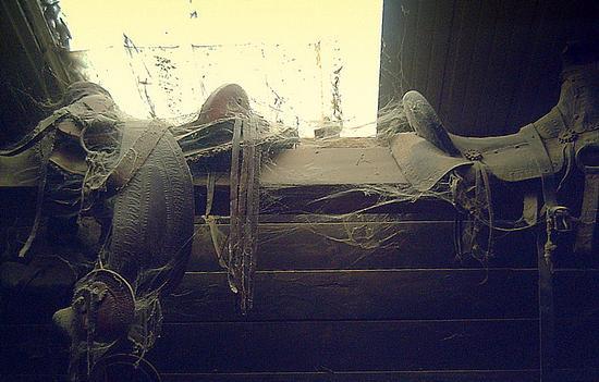 dimenticati in soffitta - Marina di massa (1986 clic)