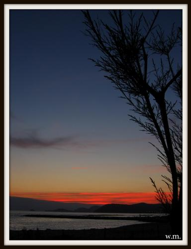 tramonto sui tamerici... - Marina di massa (988 clic)