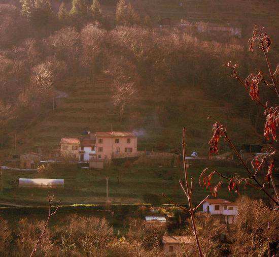cascinale in collina - Riomagno (1752 clic)