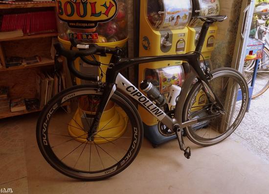 ..la bici di cipollini... - Marina di massa (1033 clic)