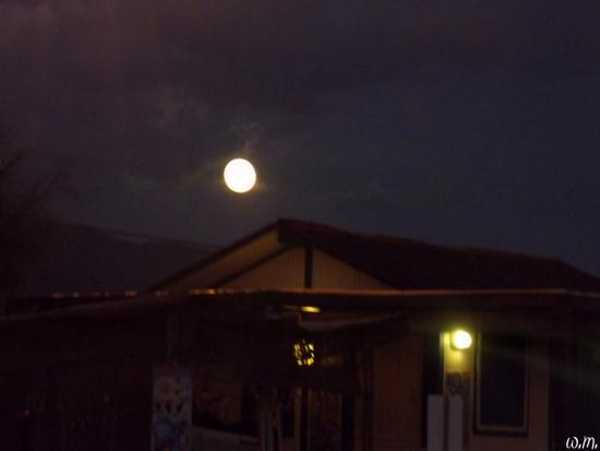 luna piena - Marina di massa (993 clic)