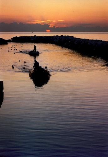 il ritorno dei pescatori... - Marina di massa (2220 clic)