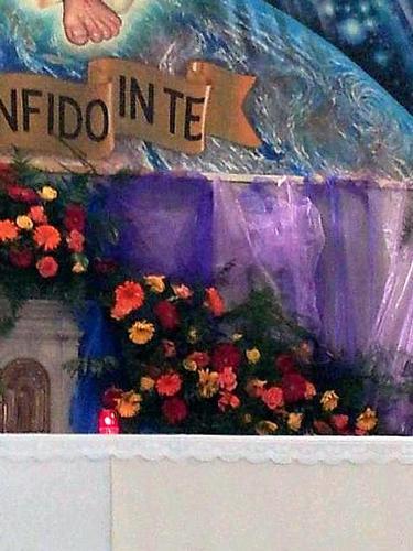 immagine di cristo - Canevara (1451 clic)