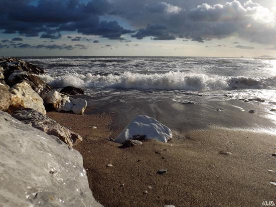..paesaggi di fine novembre.. - Marina di massa (1391 clic)