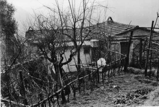 casa in collina - Riomagno (3099 clic)