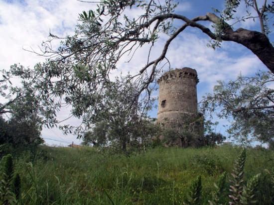 Caulonia Torre (2968 clic)