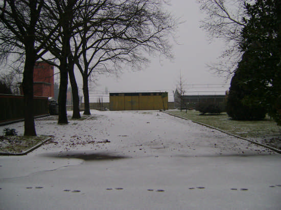 Parco innevato - Cadriano (2056 clic)