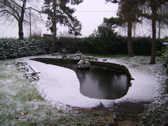 Parco innevato - CADRIANO - inserita il 19-Feb-09