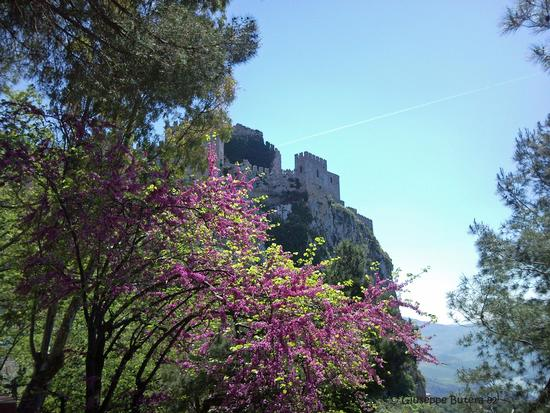 caccamo castello (1360 clic)