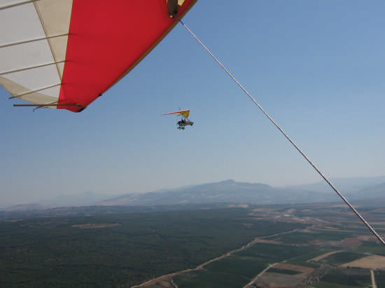 volo sul bosco Magaggiaro Montevago (3243 clic)