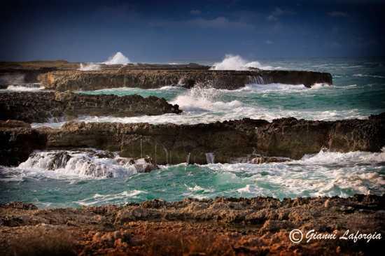 ... al mare - Mesagne (2475 clic)