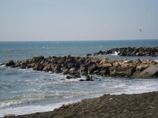 Profumo di mare - Ladispoli (6912 clic)