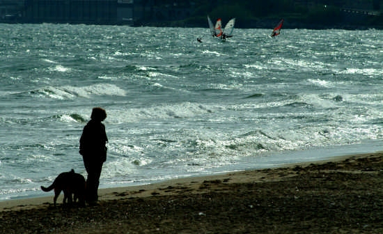 mare d'inverno - Formia (3649 clic)