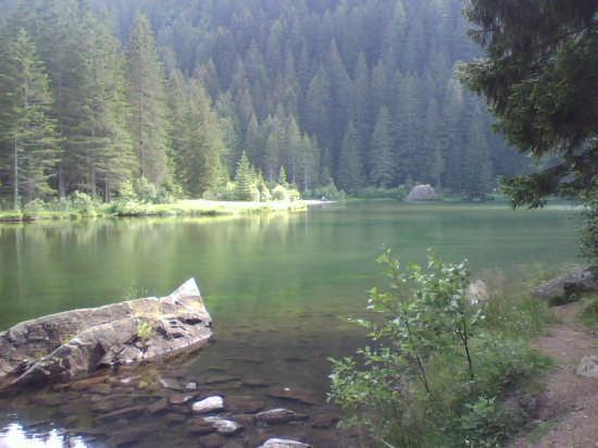 Montagna - Pejo (2041 clic)