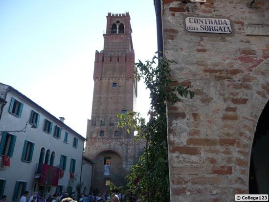 la torre per Vicenza detta del cervo - Noale (1493 clic)