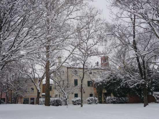 Noale e la neve (2215 clic)