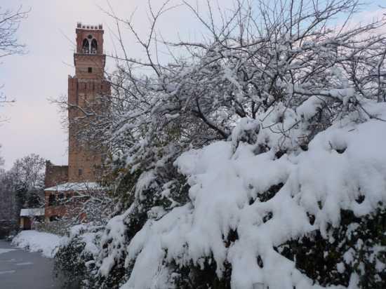 Noale e la neve (3199 clic)