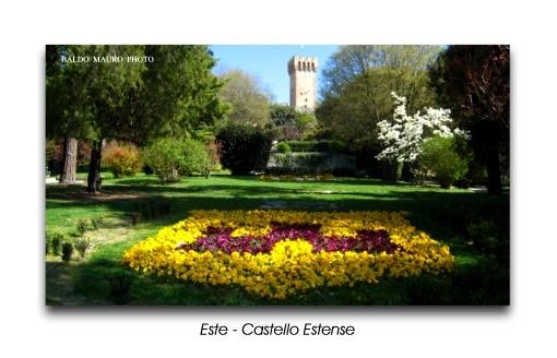 Castello Estense in primavera (3590 clic)