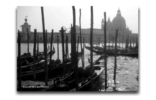 Santa Maria della Salute - Venezia (2651 clic)
