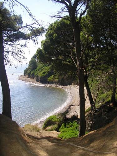 PUNTA LICOSA - Castellabate (3267 clic)