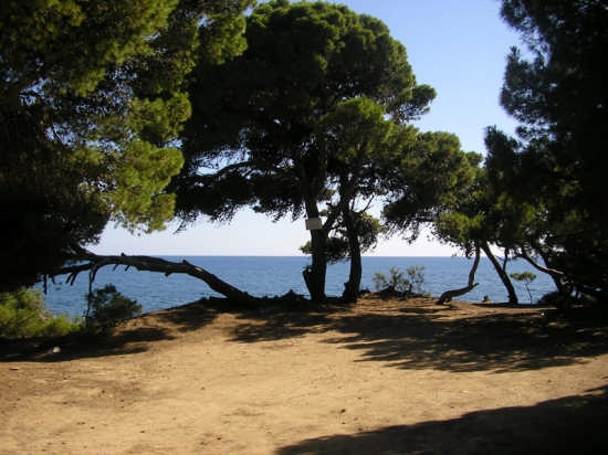PUNTA LICOSA - Castellabate (3405 clic)