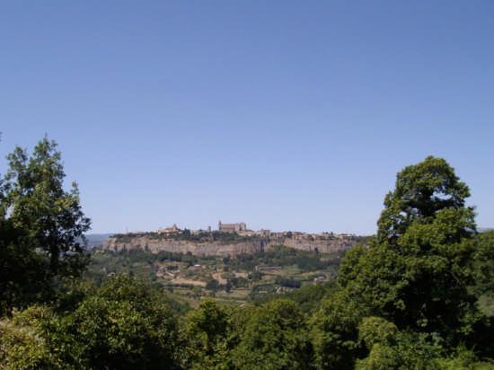 La rupe - Orvieto (2449 clic)
