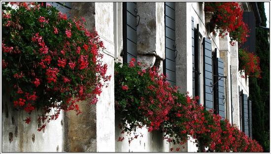 dettagli... - Bassano del grappa (872 clic)
