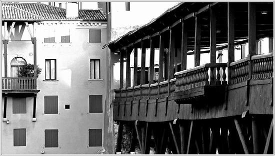 legni sulla Brenta  - Bassano del grappa (884 clic)