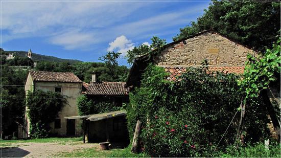 veneto abbandonato - Mossano (938 clic)