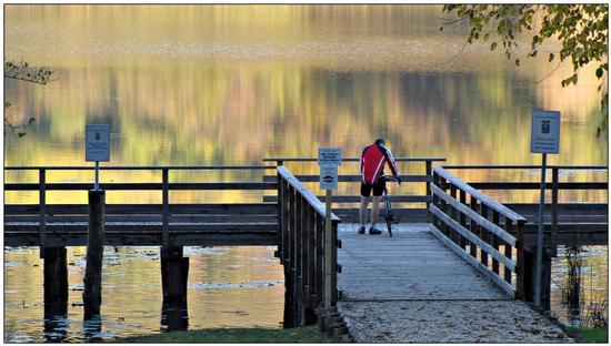 fall.. - Arcugnano (967 clic)