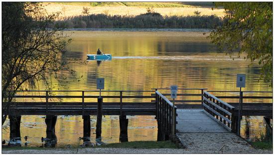 autunno...luce tagliente.. - Arcugnano (998 clic)