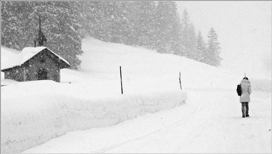 nevicando ..immenso silenzioso  suono  - Gallio (1260 clic)