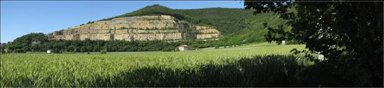 armonia a Maggio  - Sossano (909 clic)