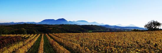 landscape d'autunno.. - Mossano (791 clic)