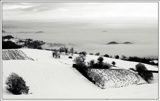 segni tra neve e nebbia  - Nogarole vicentino (1000 clic)