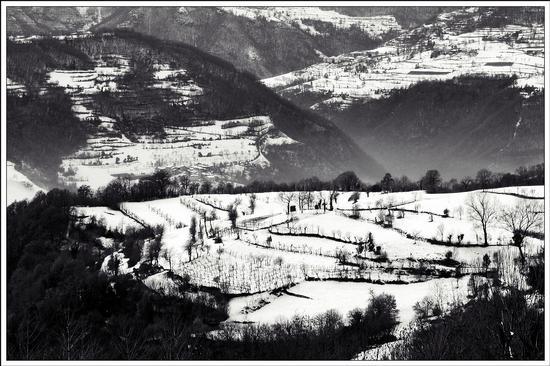 valle.. - Altissimo (792 clic)
