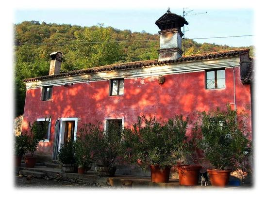 la casa in collina.. - Villaga (485 clic)
