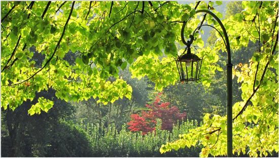 luce d'autunno.. - Borghetto (579 clic)