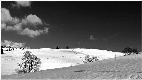 profili verso primavera... - Gallio (812 clic)