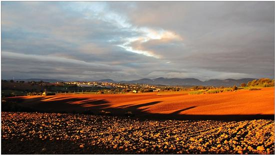 alba d'ottobre  - Appignano (1113 clic)