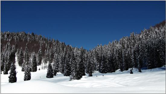 azzurro .. - Gallio (833 clic)