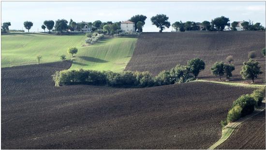 armonie d'autunno - Appignano (1108 clic)