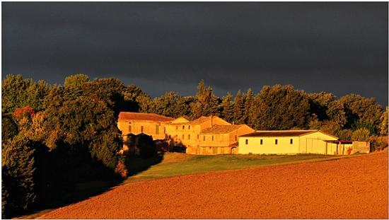 luce d'alba : autunno  - Appignano (897 clic)