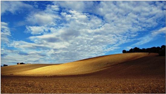 ombre e luci d'autunno  - Osimo (1087 clic)
