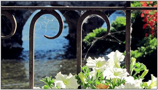 armonia di maggio  - Borghetto (2766 clic)
