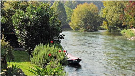 autunno..nell'aria e nell'acqua - BORGHETTO - inserita il 29-Sep-14