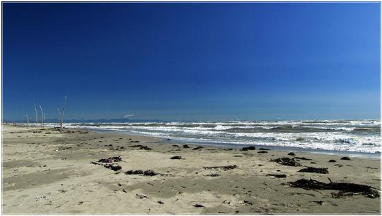 mare  a maggio.. - Rosolina mare (714 clic)
