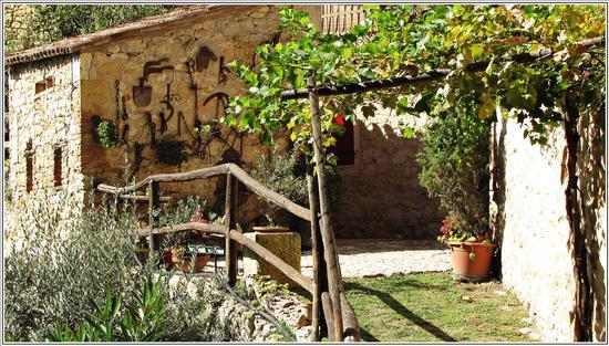 la bella estate ..(c-pavese) - Mossano (701 clic)