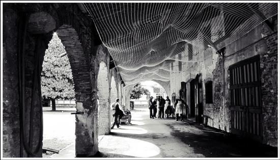 in corte... - Villa bartolomea (380 clic)